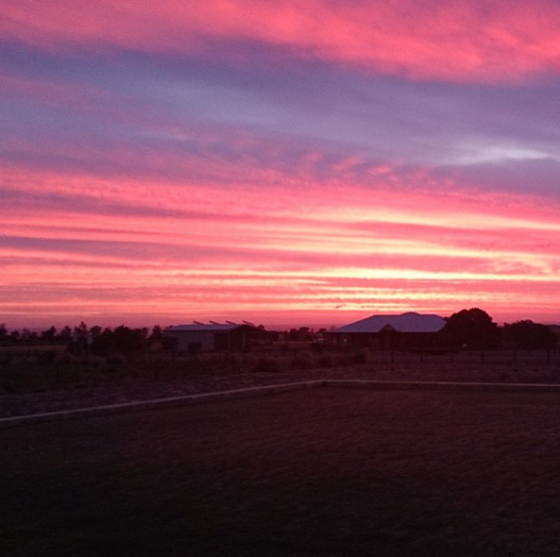 Sunset from my front lawn last night. The Sunsets here are amazing! xoxo