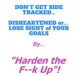 "Don't get side tracked or disillusioned by ""Harden the F–k Up"""